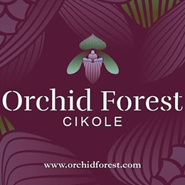 Orchid Forest Cikole In Bandung Info Map Promos Events